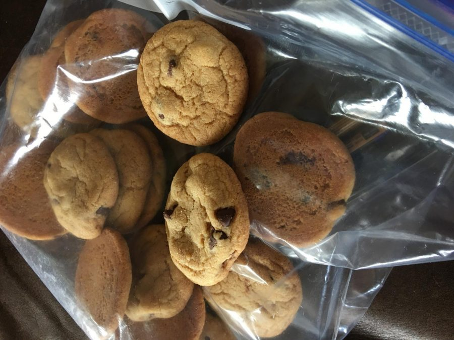 Zoe+Greener+%2722+and+I+made+cookies+to+test+out+baking+as+a+quarantine+activity.+