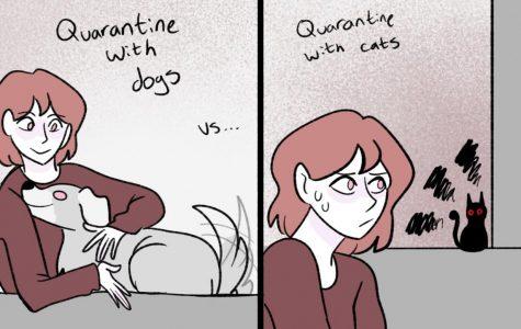 Quarantine with Pets