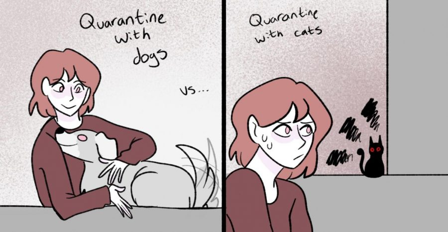 Quarantine with Pets